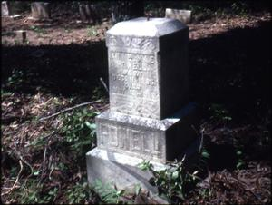 Primary view of object titled '[Grave of Annie Mae Powell, Marshall]'.