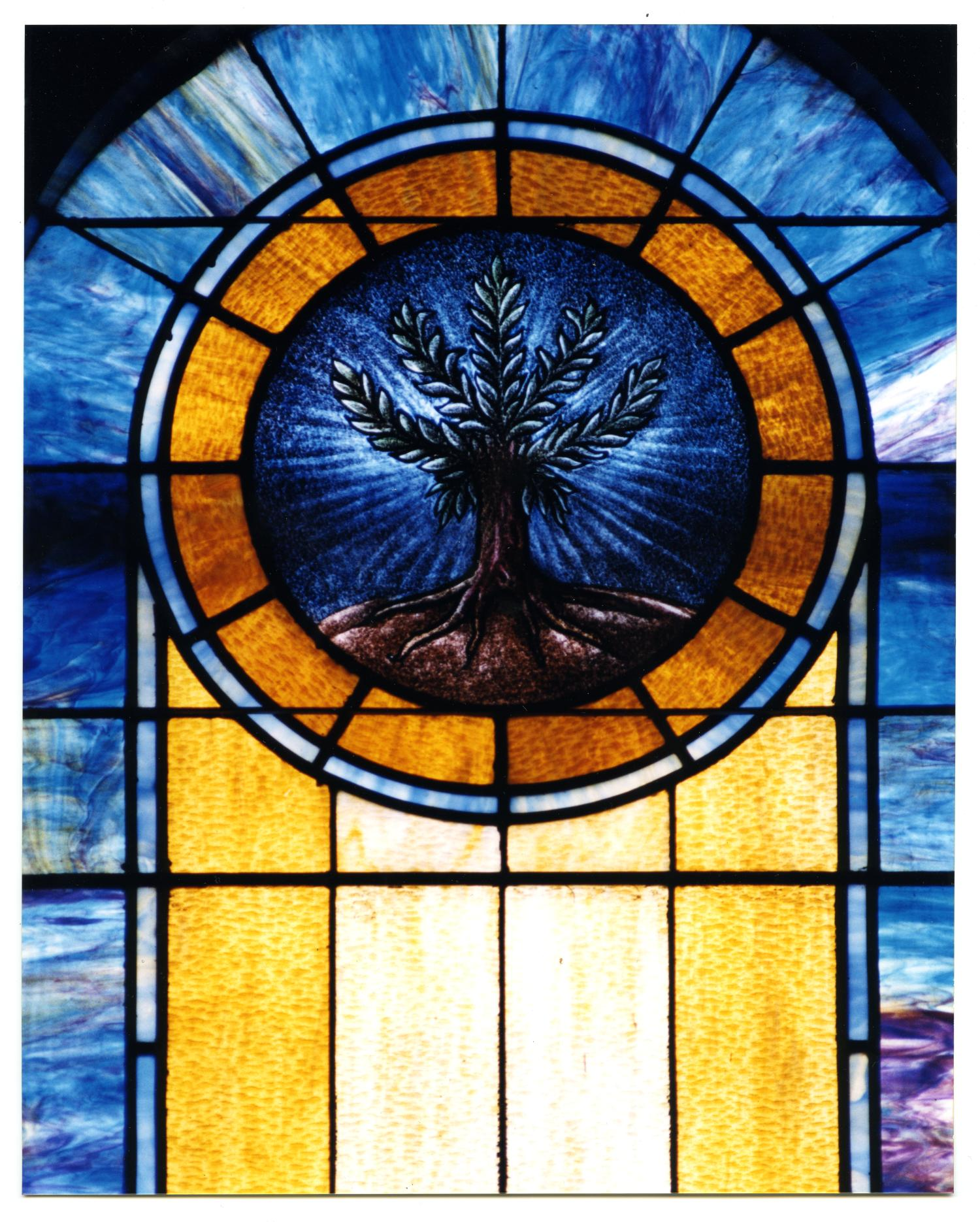 glass window pane bubble stained glass window pane of an olive tree the portal to texas history stained