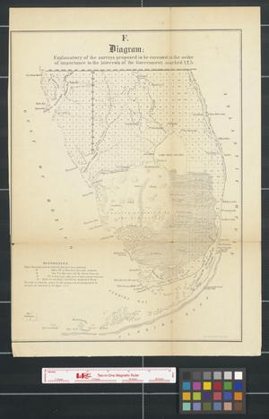Primary view of object titled 'Diagram: of Tampa Land District: shewing those townships in which swamp land lists have been sent up, also those townships in which lists are in process of examination [Sheet 2].'.