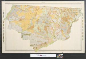 Primary view of object titled 'Soil map, Florida, Gadsden County sheet.'.