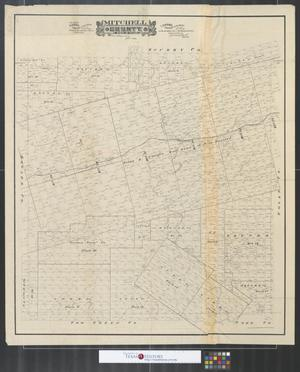 Primary view of object titled 'Mitchell County, state of Texas.'.