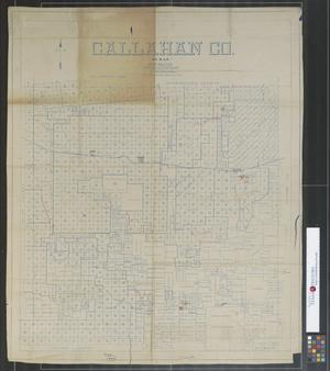 Primary view of object titled 'Callahan Co.'.