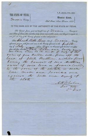 Documents pertaining to the case of The State of Texas vs. Charles Reese, cause no. 333, 1853
