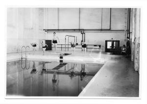 Primary view of object titled '[West Texas State Teachers College swimming pool]'.