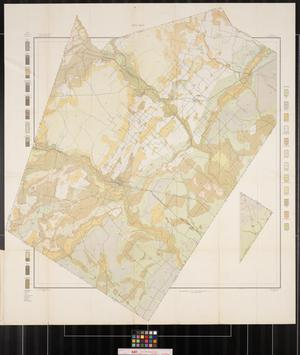 Primary view of object titled 'Soil map, Texas, Wilson County'.