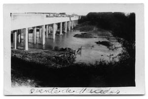 Primary view of object titled 'Bridge at Puente de Mercedes'.