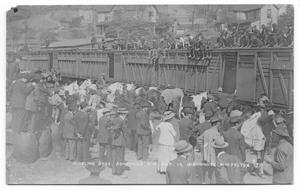 Primary view of object titled 'Ringling Brothers Rail Cars'.