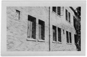 Primary view of object titled 'Kilian Hall windows'.