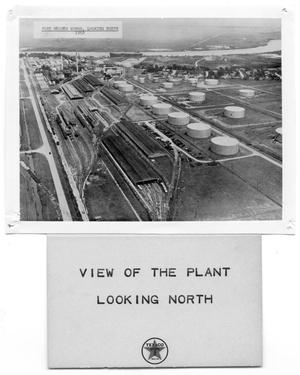 Primary view of object titled '[View of the Plant]'.