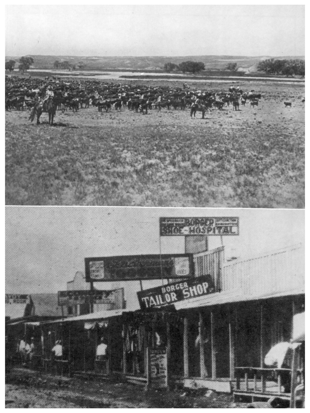 History of Hutchinson County, Texas: 104 years, 1876-1980                                                                                                      [Sequence #]: 3 of 526