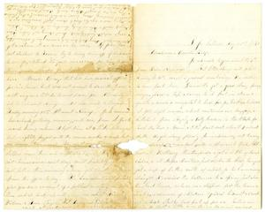 Primary view of object titled '[Letter from Elvira Moore to Jo Wallace, August 20, 1879]'.
