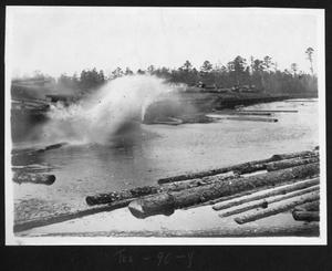 Primary view of object titled '[Logs being unloaded into the Mill Pond]'.