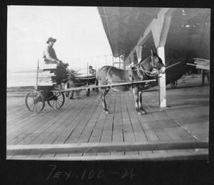 Primary view of object titled '[Donkey pulling a Lumber Cart]'.