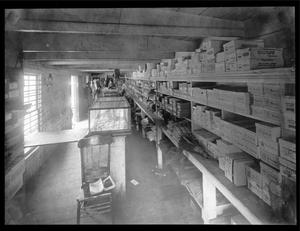 Primary view of object titled '[Camp 1 Company Store]'.