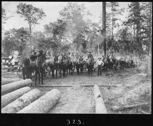 Primary view of object titled '[Camp 2 Four-mule Logging Teams]'.