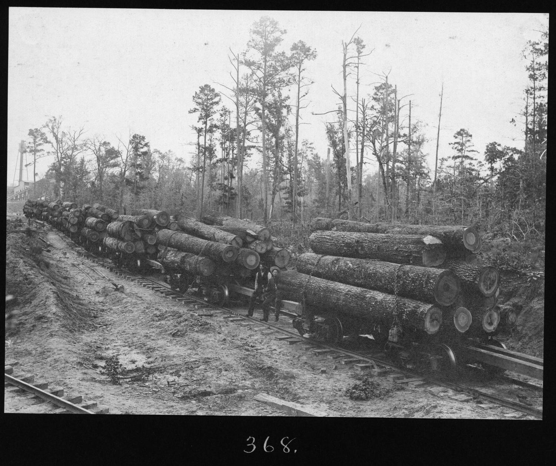 Hardwood log cars the portal to texas history