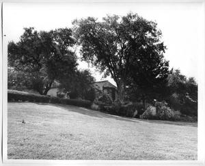 Primary view of object titled '[Photograph of DeGolyer Estate Back View]'.