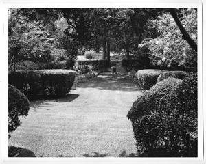 Primary view of object titled '[Photograph of the DeGolyer Estate Garden]'.