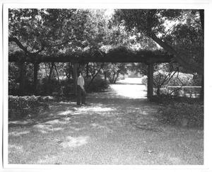 Primary view of object titled '[Photograph of the DeGolyer Estate Garden and an Unidentified Man]'.