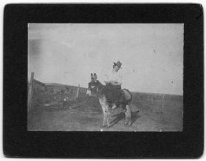 [Emma Henard riding a mule]