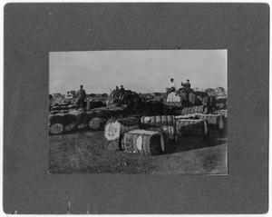 Primary view of object titled '[Cotton gin in Wellington]'.