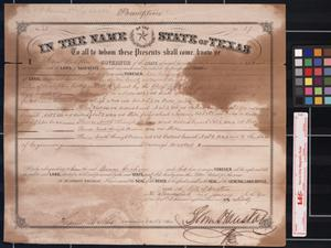 Primary view of object titled '[Land grant] : Austin, [Tex.], 1860 January 26.'.
