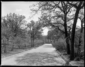Primary view of object titled '[Redbud Lane on TSCW campus]'.