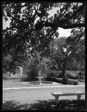 Primary view of object titled '[Garden in back of TSCW President's Home]'.