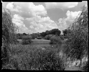 Primary view of object titled '[Denton City park looking toward (TWU) Administration Building]'.