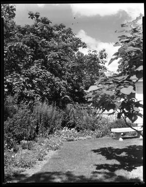 Primary view of object titled 'Garden behind President's home (now Administration Building)'.