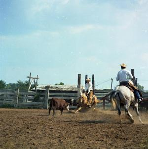 Primary view of object titled '[Cowtown Daze Show, May 1966]'.