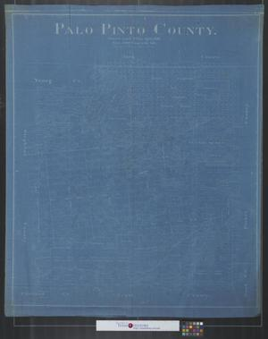 Primary view of object titled 'Palo Pinto County [Texas].'.