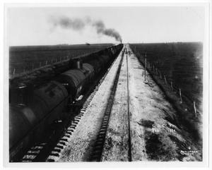 Primary view of object titled '[Cargo train going through the plains]'.