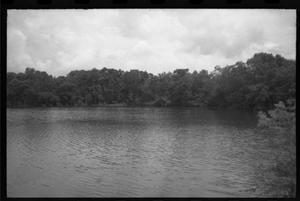 Primary view of object titled '[Miller's Lake and surrounding trees]'.
