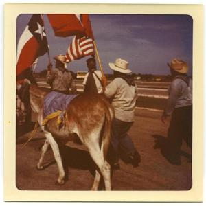 Primary view of object titled '[Men carrying flags in Minimum Wage March]'.