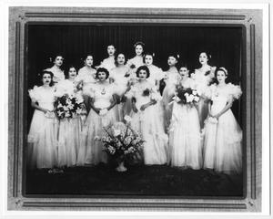 Primary view of object titled '[Fourteen Club Terpsicore members posing with flowers]'.