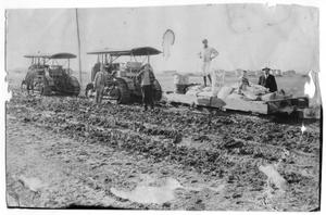 Primary view of object titled '[Poultry Farming Preparation]'.