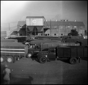 Primary view of object titled '[Dump Trucks Parked Outside of a Lummus Mill]'.