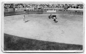Primary view of object titled '[A Bullfighting Ring in Mexico]'.