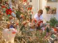 Photograph: [Woman arranges the Christmas decorations]