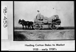 Primary view of object titled 'Hauling Cotton to Market'.