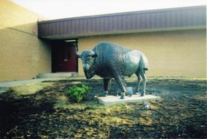 Primary view of object titled 'The Spirit of the Community & the School Buffalo Survives'.