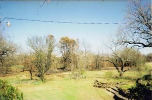 Yard behind Zora Mae Bryant Home