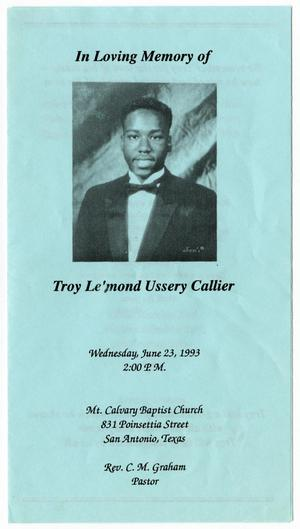 Primary view of object titled '[Funeral Program for Troy Ussery Callier, June 23, 1993]'.