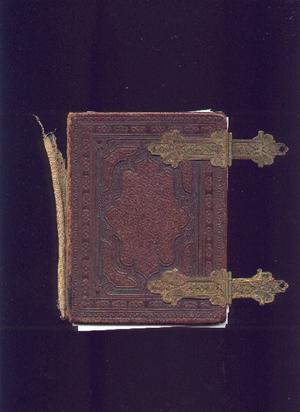 Primary view of object titled '[Cover of Herbert family photo album]'.