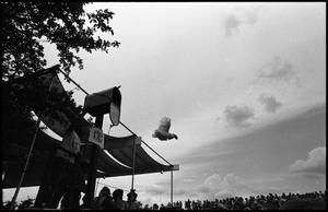 Primary view of object titled '[Chicken Flying Contest at the Texas Folklife Festival]'.
