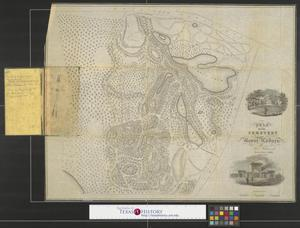 Primary view of object titled 'Plan of the cemetery of Mount Auburn [Middlesex County, Massachusetts].'.