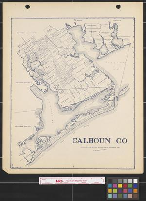 Primary view of object titled 'Calhoun County'.