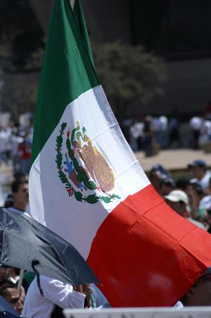 Primary view of object titled '[Mexican Flag is displayed at protest march]'.