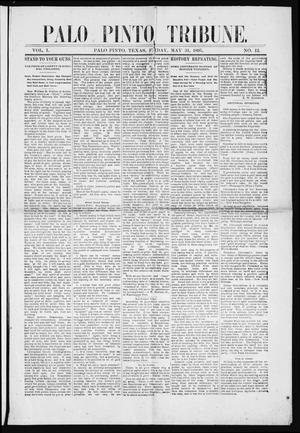 Primary view of object titled 'Palo Pinto Tribune. (Palo Pinto, Tex.), Vol. 1, No. 12, Ed. 1 Friday, May 31, 1895'.